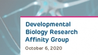 Developmental Biology Research Affinity Group