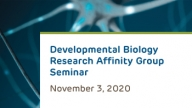 Developmental Biology Research Affinity Group Virtual Seminar