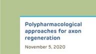 Polypharmacological Approaches for Axon Regeneration