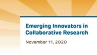 Emerging Innovators in Collaborative Research