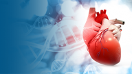 Genomic Biomarkers and Heart Disease